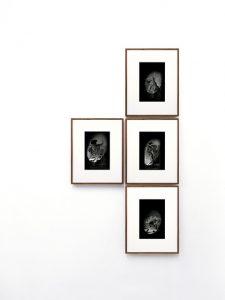 Fotoserie Possessors and Possessed Alexandra Hopf